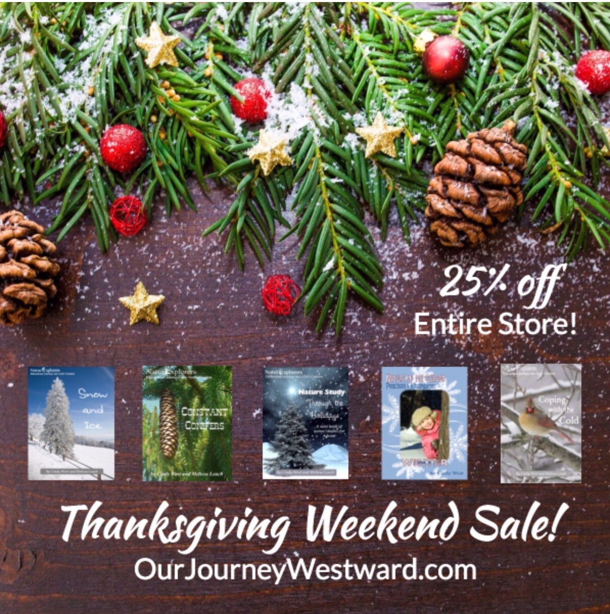 Thanksgiving Weekend Sale -25% off site wide